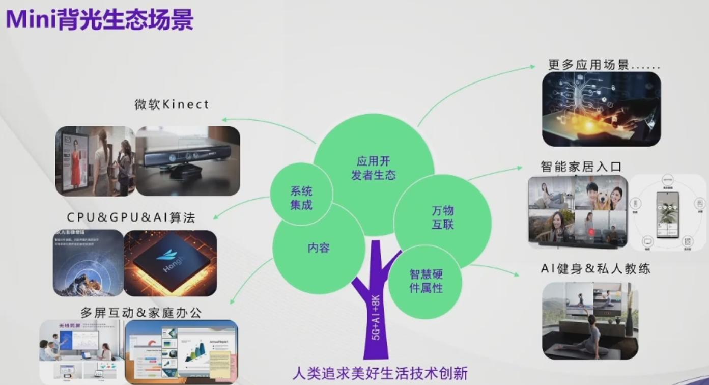 2020新型显示研讨会--瑞丰光电MiniLED分享