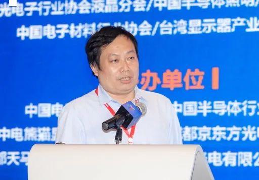 2020第四届中国(国际)Micro-LED显示高峰论坛暨第二届成都新型显示合作洽谈会胜利召开  第16张