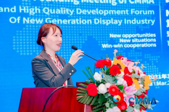 中国电子视像行业协会Mini/MicroLED显示产业分会第一次成员大会暨新一代显示产业高质量发展论坛成功举办  第6张