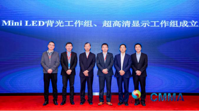 中国电子视像行业协会Mini/MicroLED显示产业分会第一次成员大会暨新一代显示产业高质量发展论坛成功举办  第18张