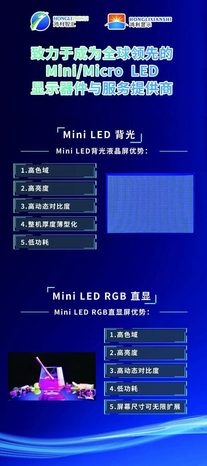 """鸿利智汇亮相""""新型显示产业研讨会"""",共话Mini/MicroLED半导体显示技术未来  第2张"""