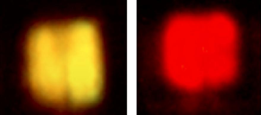美国加州大学在红光Micro LED芯片获突破!