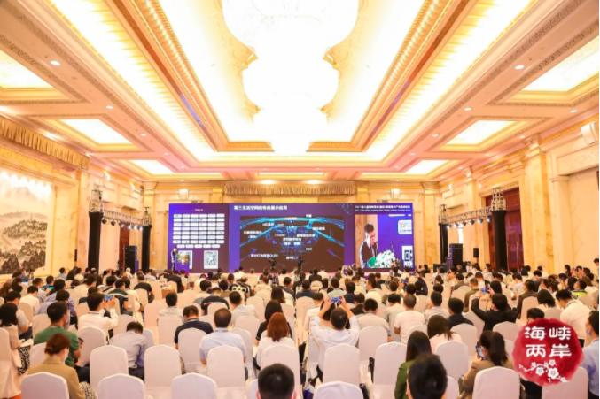 创新强链,合作共赢! 2021第八届海峡两岸(南京)新型显示产业高峰论坛成功举办  第6张