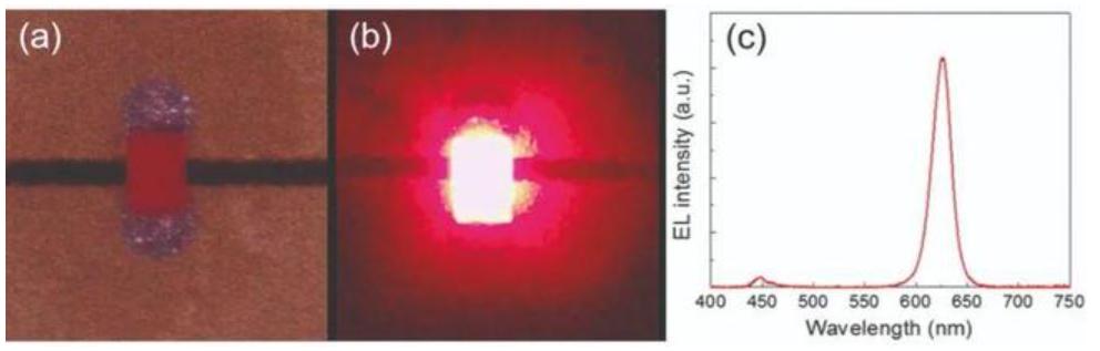 在纳米孔中插入量子点可制备高效可靠的MicroLED  第7张